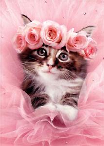 Cute kitteh wearing a rose wreath.